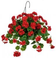 GeraniumHangingBasket-FlowerFundraiser